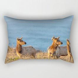 Tule Elk Cows II Rectangular Pillow