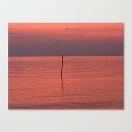 Alone in the Gulf Canvas Print