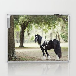 Majestic Horse in Color Laptop & iPad Skin