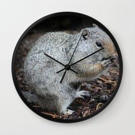 Uinta Ground Squirrel Enjoying a Meal II Wall Clock
