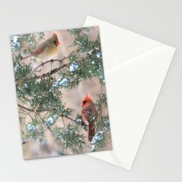Winter Pair Cardinals (sq) Stationery Cards