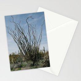Ocotillo Desert Stationery Cards