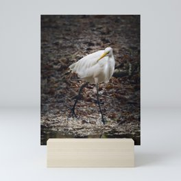 Egret Strutting Mini Art Print
