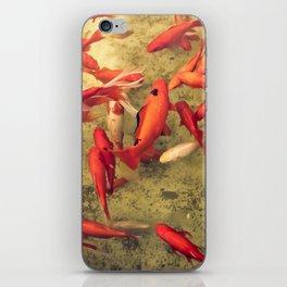 Fishy Frenzy iPhone Skin