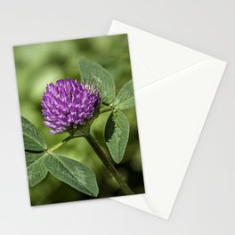 Red Clover Stationery Cards