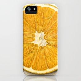 Vintage Illustration of a Grapefruit iPhone Case