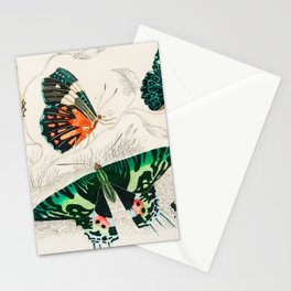 Butteflies Mariposas Papillons Schmetterlinge - Vintage Book Illustration Stationery Cards