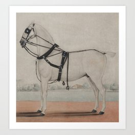 Vintage Carriage Horse Painting (1845) Art Print