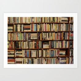 Bookshelves #2 Art Print