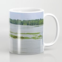 Looking for Salvation Coffee Mug