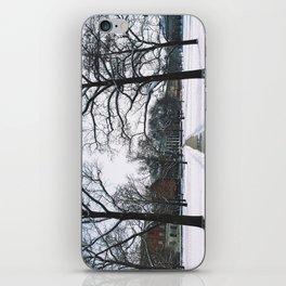 The Frozen Quad iPhone Skin
