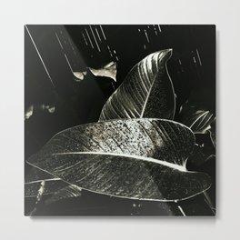 Dark days of autumn rain , wonderful as days can be Metal Print