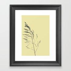 sand reed  Framed Art Print