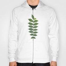 Green Leaf Botanical Print Hoody