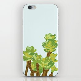 Portylacaria Afra Succulent Blue and Green iPhone Skin