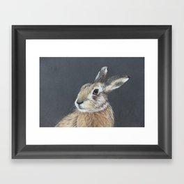 The Hares Stare Framed Art Print