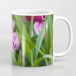 Spring Season is here! Coffee Mug