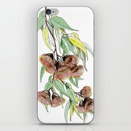 Flowering Red Gum iPhone Skin
