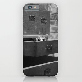 Cat in the closet iPhone Case
