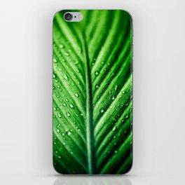 Rainy Days 7 iPhone Skin