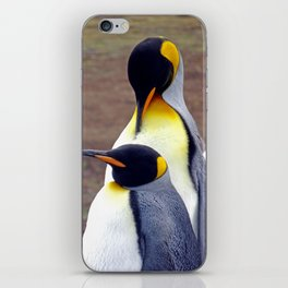 Male and Female King Penguins iPhone Skin