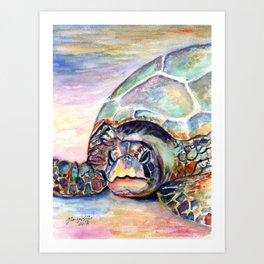 Turtle at Poipu Beach Art Print