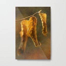 Autumn #5 Metal Print