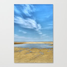 Wing It Canvas Print