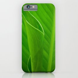 Leaves of Canna Lily Plant Nature / Botanical Photograph iPhone Case