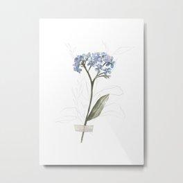 Forget Me Not Watercolor  Metal Print