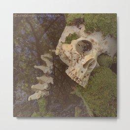 Catacomb Culture - Human Skull in Creek Metal Print