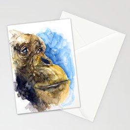 APE#3 Stationery Cards