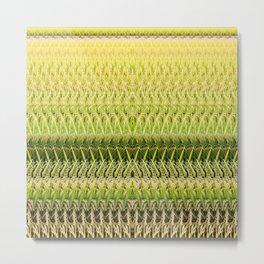 Rice Metal Print