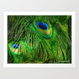 Peacock Glitter Art Print