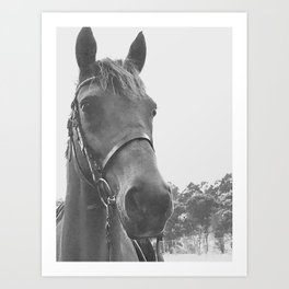 Chase in Black & White Art Print