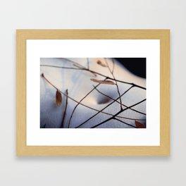 cold breeze Framed Art Print