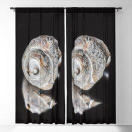 Broken Sea Shell Blackout Curtain
