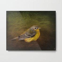 Baby Warbler Metal Print
