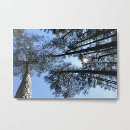 Flims II Metal Print