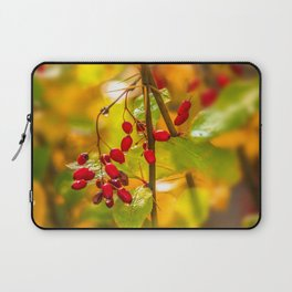 Autumn drops Laptop Sleeve