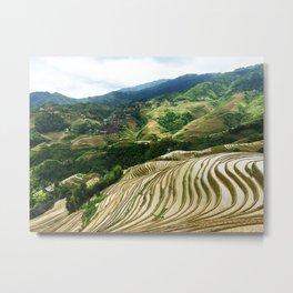 DRAGON'S BACKBONE // Longji Rice Terraces Metal Print