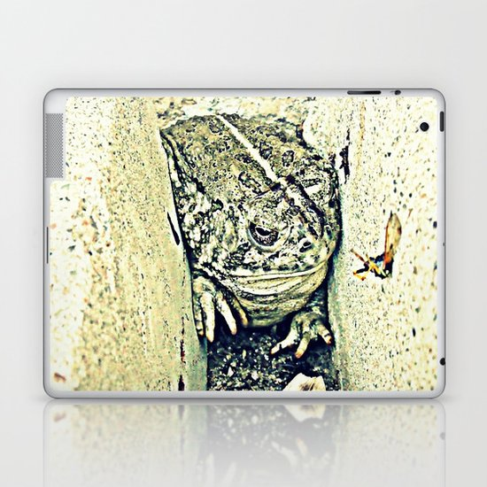 Stealth Frog Laptop & iPad Skin