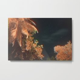 Seychellian palmtrees and the Milky Way Metal Print