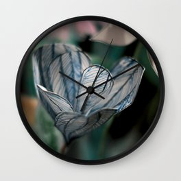 Crocus Vernus Wall Clock