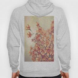 Orange Waxflowers Hoody