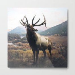 Kingdom: Wapiti Metal Print
