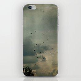 Flying Higher iPhone Skin