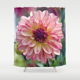 Dahlia / In The Garden / 13 Shower Curtain