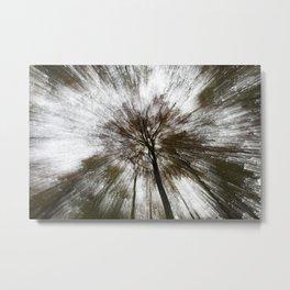 Tree Rays Metal Print