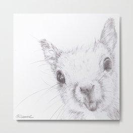 Hello Squirrel Metal Print